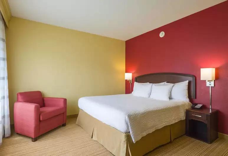 guestroom-(2).png